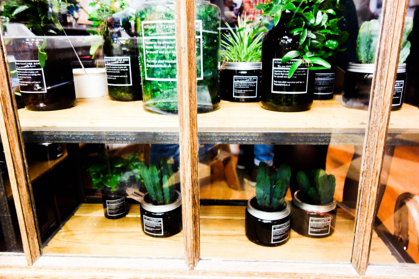 It Was An Interesting Take On Alternative Home Decor And I Can See Why They Re Trying To Expand Their Market The Concept Men Who Have Plants In Their Home