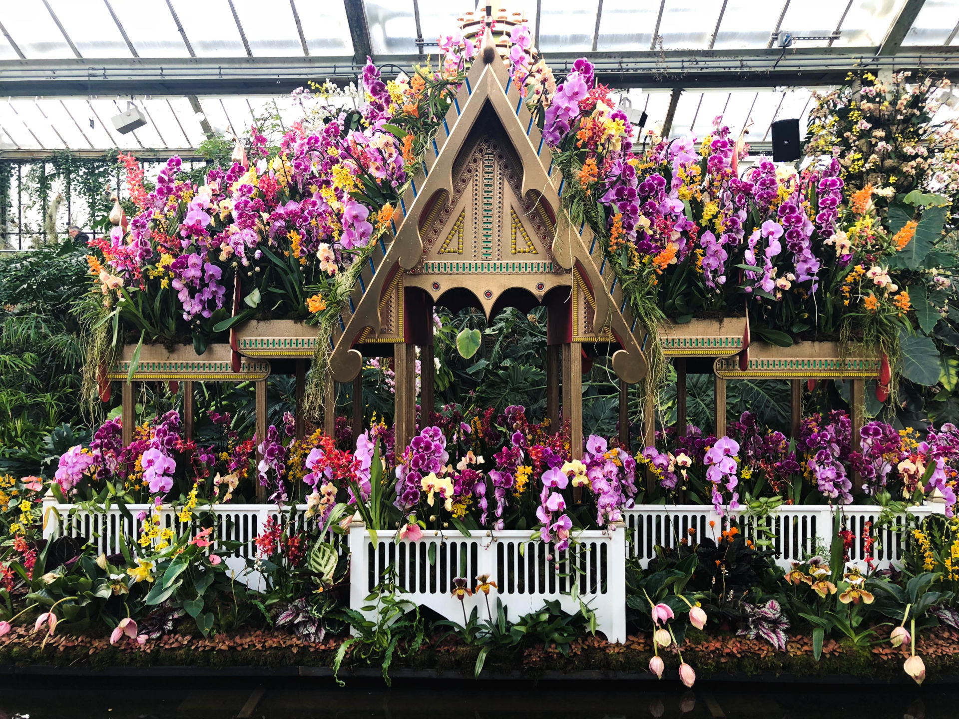 Kew Gardens London Thai Orchid Festival